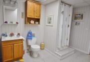 1453-Lakeview-basement-bath-1024x751