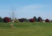 Landscaping on the Golf Course
